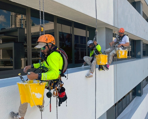 rope access painters painting a high rise building is Brisbane
